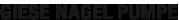 giesenagelpumpe_logo
